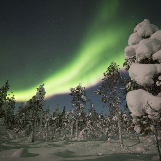 The Northern Lights is also known as Aurora Borealis.